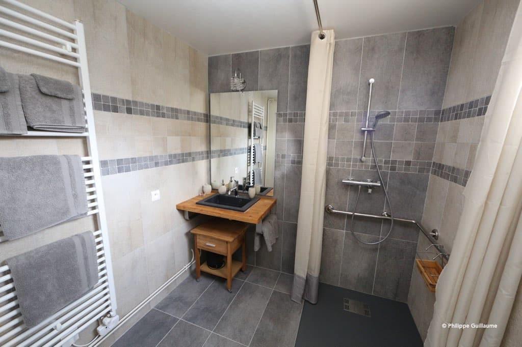 salle de bain adaptée aux personnes à mobilité réduite, dans la chambre accessible aux animaux, le poisson volant