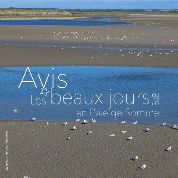 votre avis sur les beaux jours en Baie de Somme, chambre et table d'hôtes à 12 km du Marquenterre, du Crotoy et de Saint Valery
