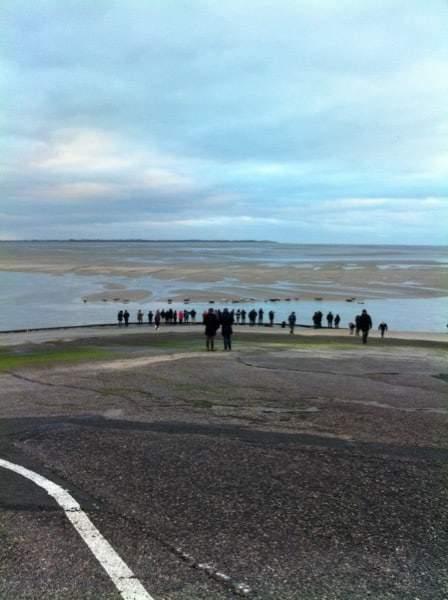 Phoques au niveau de la base nautique de Berck sur Mer en Baie d'Authie les beaux jours en Baie de Somme
