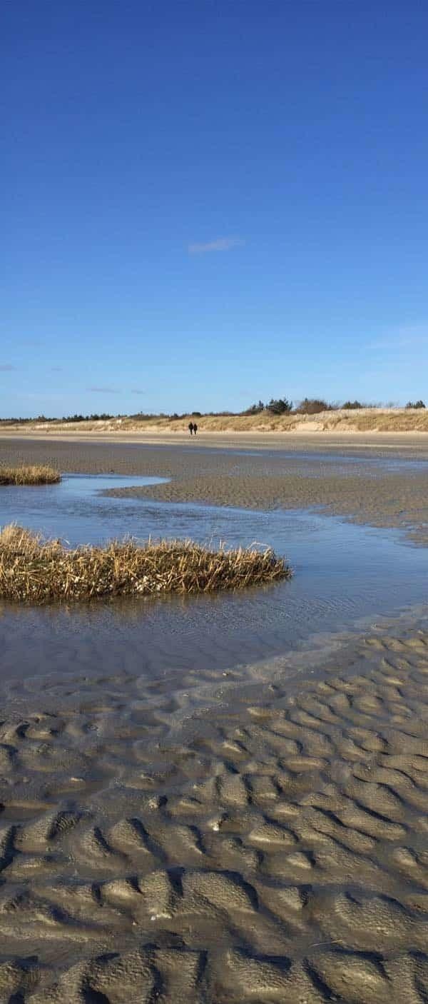 Traverser la Baie de Somme, une expérience à vivre. les beaux jours en Baie de Somme.
